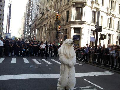 Polar Bear and Police