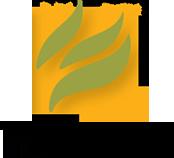 mint press logo