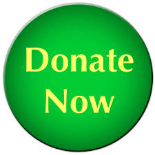 donate now green yellow